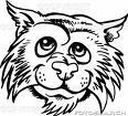 Wildcat funny