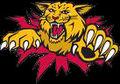 Wildcat bust thru