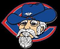 Colonel logo