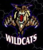 Wildcat_lightning