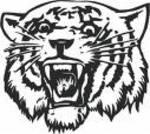 Wildcat5